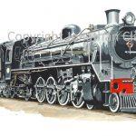 763 SAR Class 19D 4-8-2