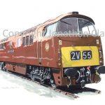819 Class 52 Diesel No. D1015 Western Champion